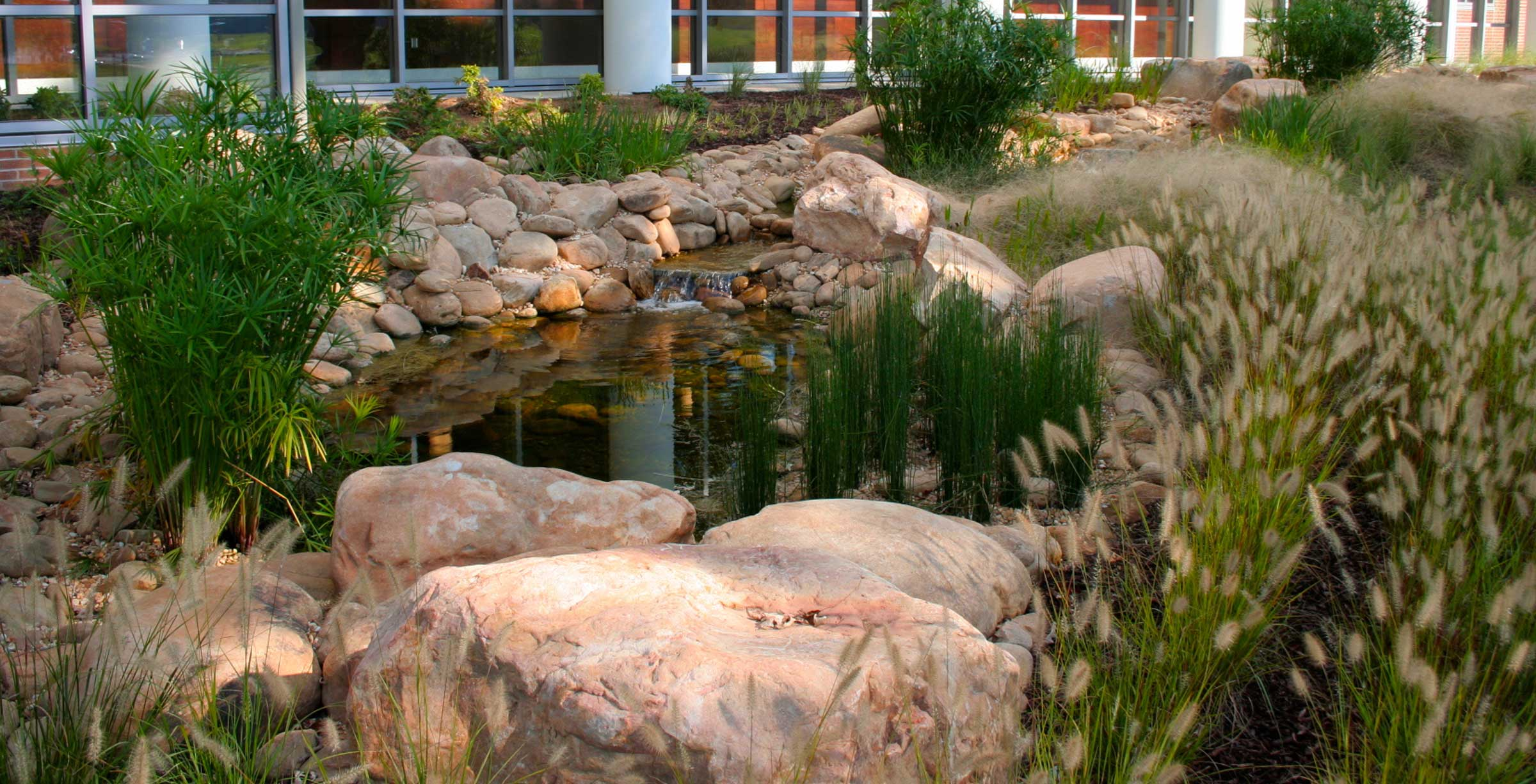 rock formation and landscaping